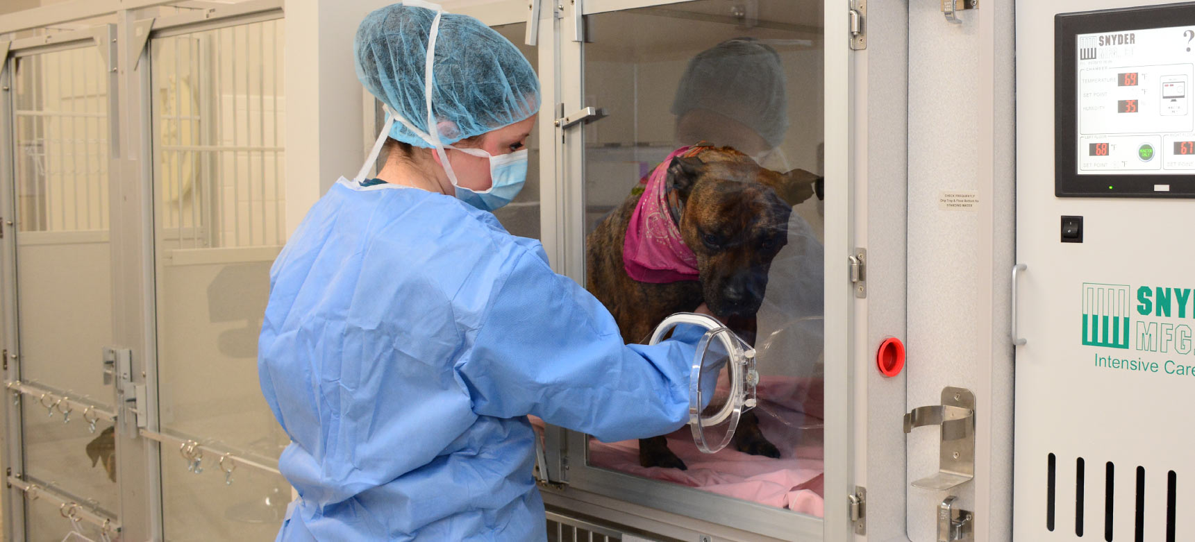 24hr Pet Emergency and Critical Care